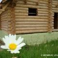 Russia_2_tn.jpg